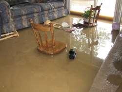 Impressive Flood Damage Restoration