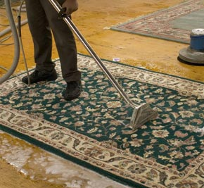 Steam cleaning a rug gold coast